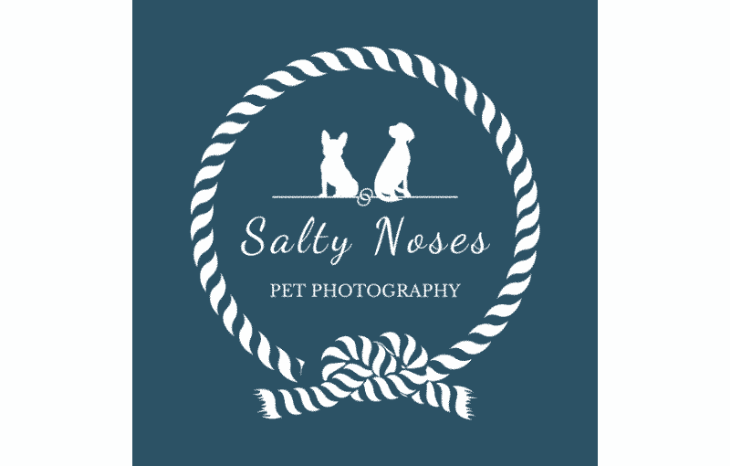 Salty Noses Pet Photography