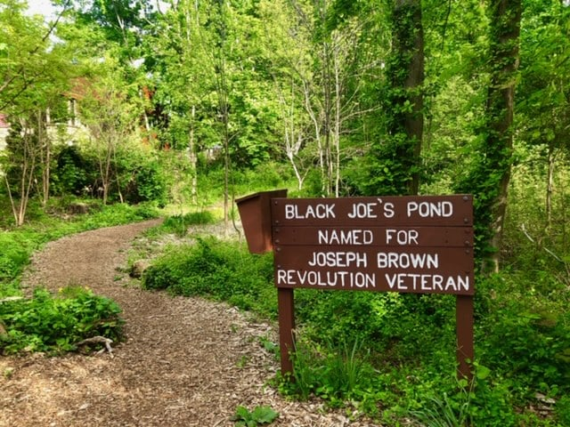 Black Joe's Pond
